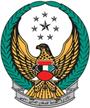UAE Fire    997